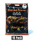 InstaFire Charcoal Briquette Fire Starter Pouches for Grills, Smokers, More - Chemical Free, Awarded 2011 Innovative Product Of The Year,10 Pk
