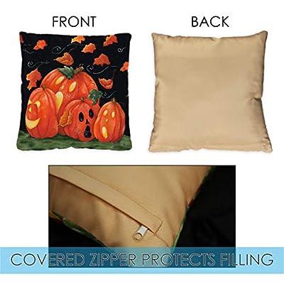 Toland Home Garden 761294 Scary Night 18 x 18 Inch Indoor/Outdoor, Pillow Case (2-Pack) : Garden & Outdoor