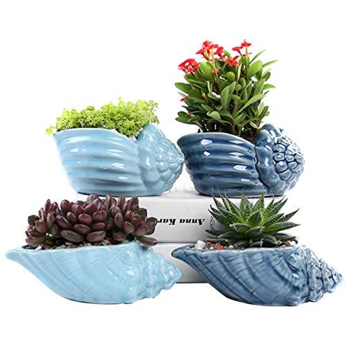 winemana Set of 4 Ocean Style Ceramic Succulent Pots, Field Snail Flowerpot, Sea Snail Cactus Bonsai Planter Container (Blue)
