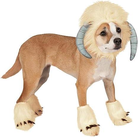 Balacoo - Disfraz de oveja para perro, color blanco: Amazon.es ...