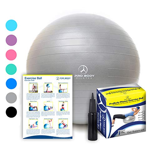 Exercise Ball - Professional Grade Anti-Burst Fitness, Balance Ball for Pilates, Yoga, Birthing, Stability Gym Workout Training and Physical Therapy (Silver, 45 cm)