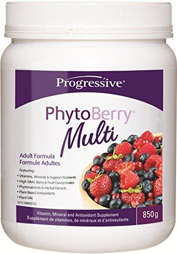 Progressive PhytoBerry Multi, 850 g