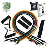RitFit 11 Pcs Resistance Band Set with Door Anchor, Ankle Strap, Exercise Chart, and Resistance Band Carrying Case