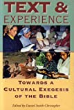 Text and Experience : Towards a Cultural Exegesis of the Bible, , 1850757402