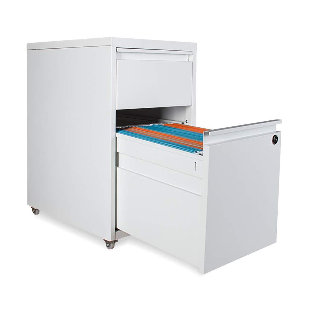 Amazon.com: FPigSHS File cabinets Data Storage File Box ...