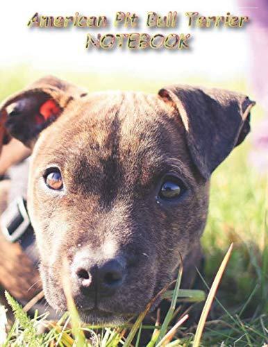 """American Pit Bull Terrier NOTEBOOK: Dog Notebooks and Journals 110 pages (8.5""""x11"""")"""