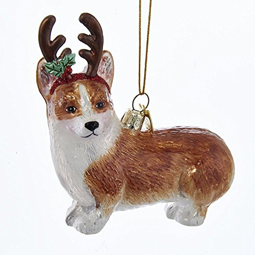 Kurt-Adler Glass Ornament with S-Hook and Gift Box, Dog with Antlers Collection (Pembroke Welsh Corgi, NB1261CG)