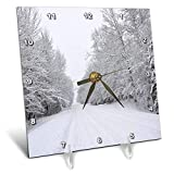 3dRose Dreamscapes by Leslie - Scenery - Country Road After a Snow Storm - 6x6 Desk Clock (dc_292250_1)