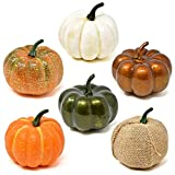 Gift Boutique 6 Pack Thanksgiving Decorative Artificial Pumpkins White Orange Green Burlap Gourds Halloween Autumn Fall Harvest Home Crafts