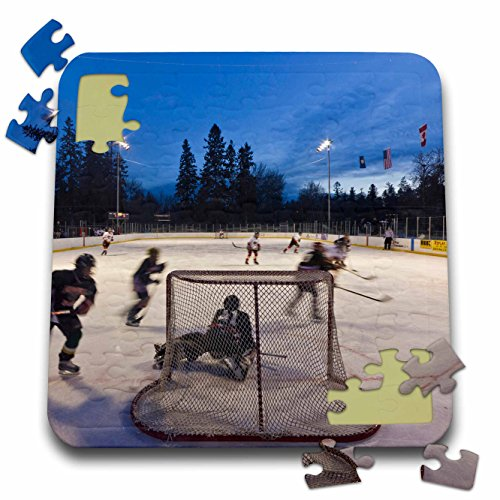 Danita Delimont - Hockey - Hockey, Woodland Park, Kalispell,, used for sale  Delivered anywhere in USA