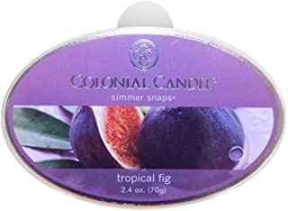 product image for Colonial Candle Simmer Snaps Wax Melt Tart Bar, Tropical Fig 2.4oz