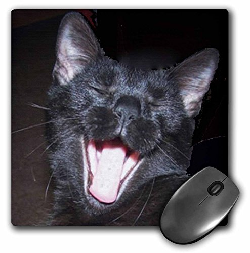 Price comparison product image 3dRose LLC 8 x 8 x 0.25 Inches Black Cat Yawning Mouse Pad (mp_6026_1)