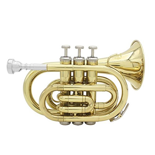 Lade Bb Mini Pocket Trumpet In Lacquer Finish With Case & Accessories by SOUND HOUSE 45