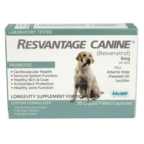 Resvantage Canine (Resveratrol) – 30 caps, My Pet Supplies