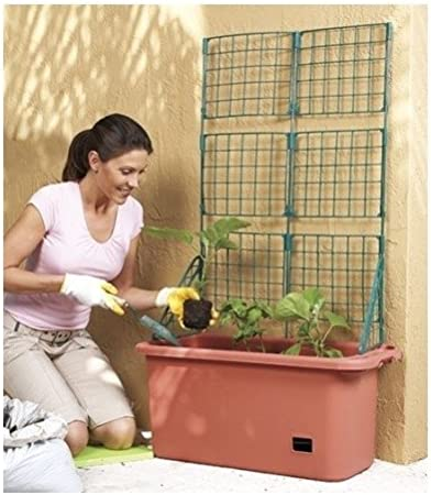 Vegetable Planter Box Comes with Trellis Mobile product image