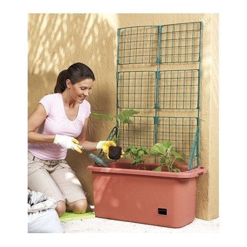 Vegetable Planter Box Comes with Trellis Mobile & Perfect for Home Garden Patch Patio & Self Watering Sale Watering Container Gardeners Will Love Growing Vegetable Plants Organic or Otherwise Since It Has Wheels and a Handle by LCI by LCI