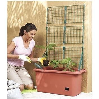Amazon.com : EarthBOX 80155 Garden Kit, Terra Cotta