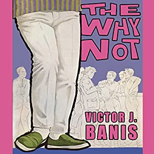 The Why Not Audiobook