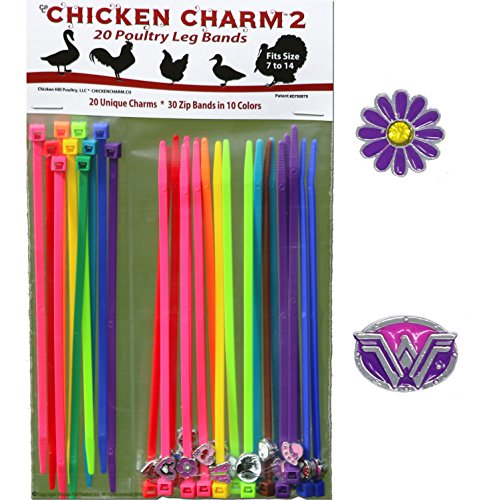 20 Chicken Charm ™ 2 Poultry Leg Bands - Fit Sizes 7 to 14