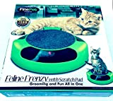 Feline Frenzy with Scratch Pad Grooming and Fun All in One