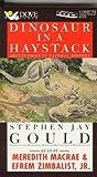 Dinosaur in a Haystack, Stephen Jay Gould, 0787107433