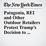 Patagonia, REI and Other Outdoor Retailers Protest Trump's Decision to Shrink Utah Monuments | Christine Hauser