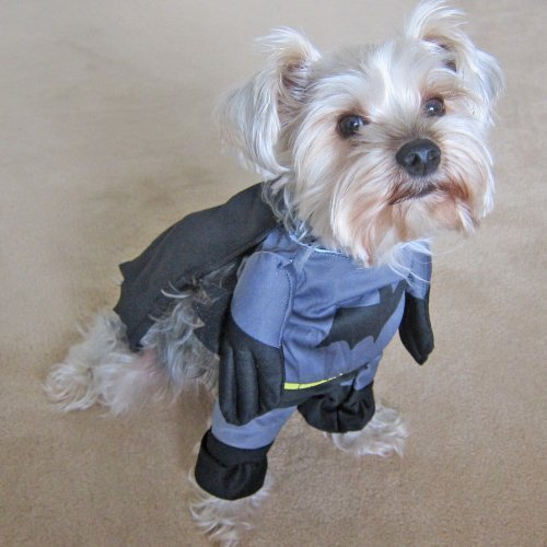 Alfie Pet - Superhero Costume Batman - Size: S - http://coolthings.us