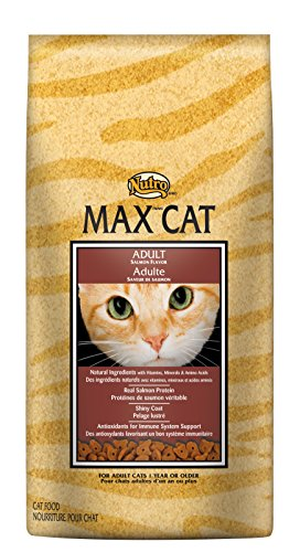 Nutro Max Cat Adult Dry Cat Food, Salmon, 6 Lbs.; Rich In Nu