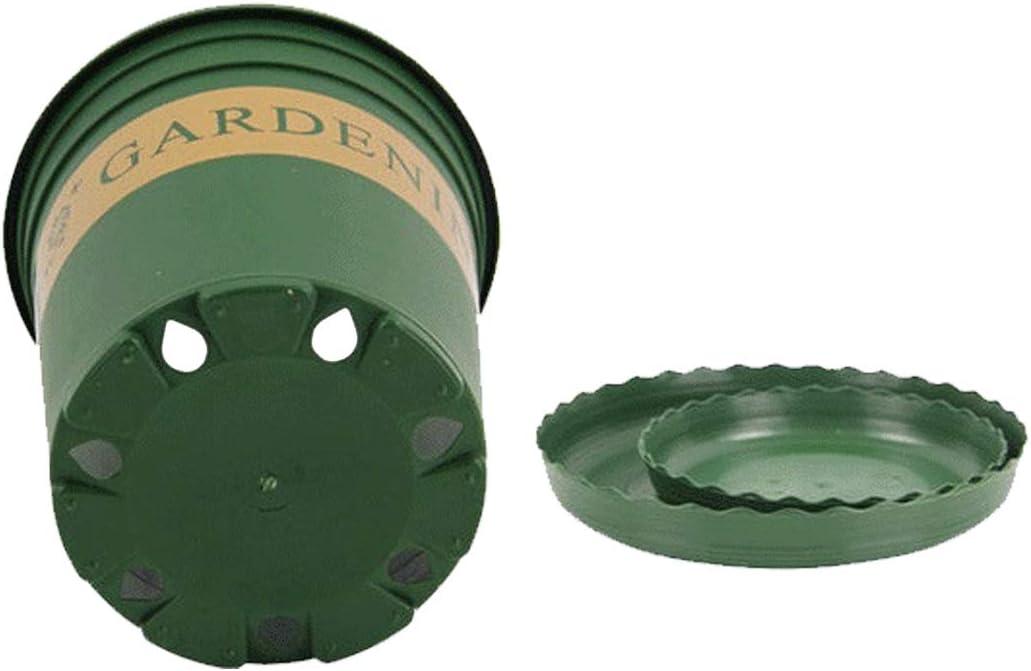 21cm 21 YangJinShan 2 Gallon Pots de Fleurs P/épini/ère Pots en Plastique Creative Gallons Pots avec Plateau 21.5