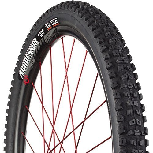 Maxxis Aggressor EXO/TR Tire from Maxxis