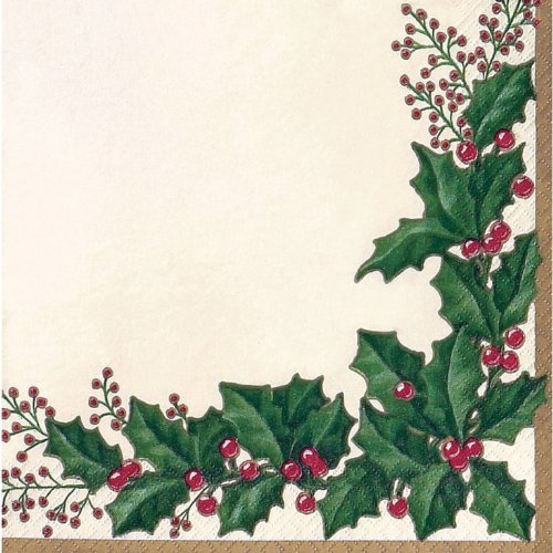 Price comparison product image Creative Converting 36568 16 Count Winter Holly Paper Dinner Napkins