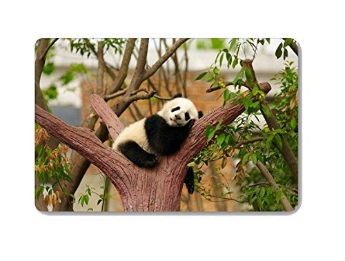 [Gwein Animal Panda Doormat Entrance Mat Floor Mat Rug Indoor Outdoor Front Door Bathroom Mats Rubber Non Slip (23.6