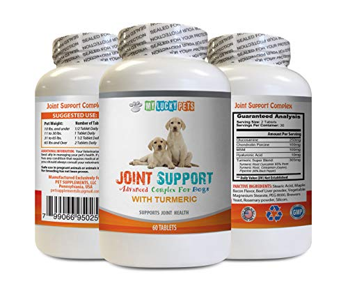 MY LUCKY PETS LLC Dog Joint Powder - Joint Health for Dogs - with Turmeric MSM and More - Support Healthy Cartilage - Turmeric Curcumin Bites for Dogs - 60 Tablets (1 Bottle)