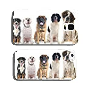 group of dogs cell phone cover case iPhone5