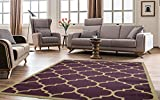 Ottomanson Paterson Collection Contemporary Moroccan Trellis Design Lattice Area Rug, 7'10'' X 9'10'', Purple