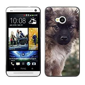 Vortex Accessory Carcasa Protectora Para HTC ONE ( M7 ) - Puppy Keeshond Fluffy Furry Small Dog -