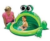Hoppy Frog Spray Pool