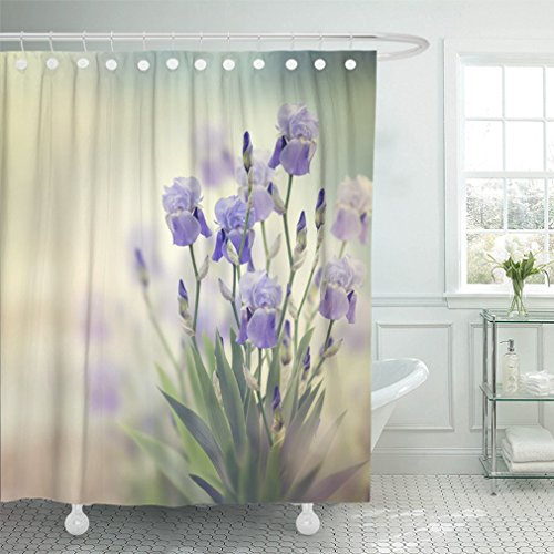 "Emvency Shower Curtain 72""x78"" Home Decor Leaf Purple Iris Flowers Blooming in The Garden Bloom Blossom Bud Flora Floral Waterproof Polyester Fabric Adjustable Hook"