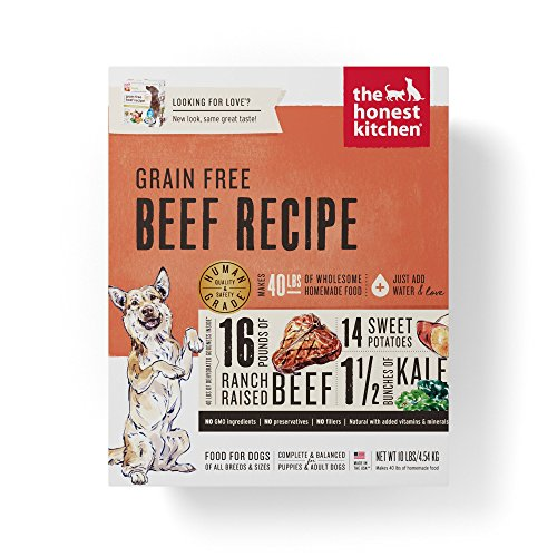 The Honest Kitchen Grain Free Beef Dog Food Recipe, 10lb box