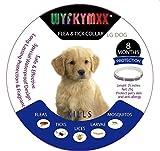 Dog Flea Treatment Collar - WYFKYMXX Bayer Flea and Tick Collar flea treatment collar for dogs 25inches 8 Month Protection