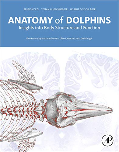 (Anatomy of Dolphins: Insights into Body Structure and Function)
