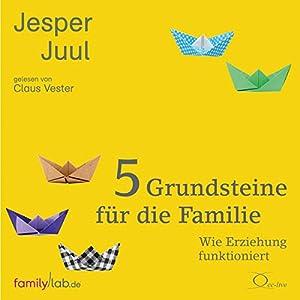5 Grundsteine für die Familie Hörbuch