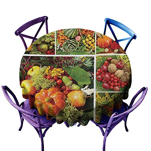 Round Outdoor Tablecloth,Harvest Photograph of Products from Various Gardens and Fields Seasonal Foods Apple Walnuts,Table Cover for Kitchen Dinning Tabletop Decoratio,47 INCH,Multicolor
