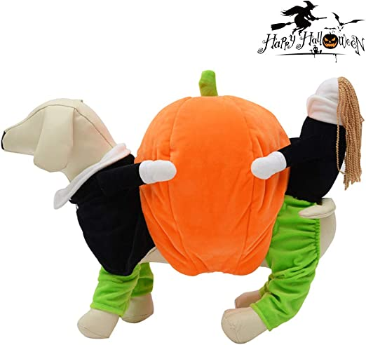 RXQEE Costume para Mascotas Disfraz para Perros Calabaza Halloween ...