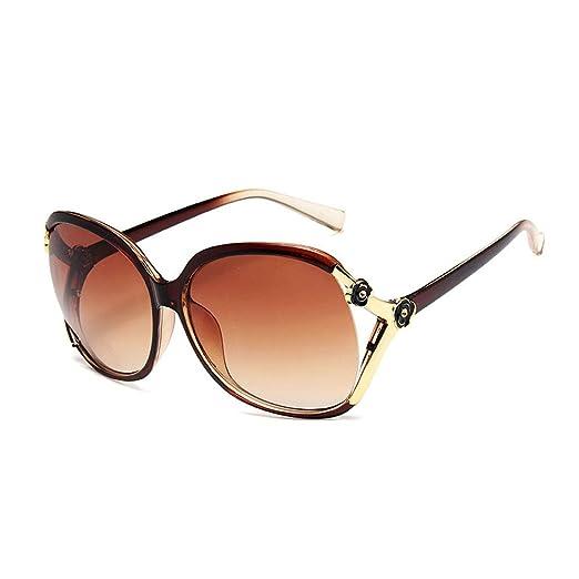 YSZDM Gafas de Sol polarizadas Retro, Lentes de Montura ...