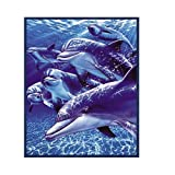 Dolphins in the Blue Sea Queen Size Mink Style Blanket by OBI