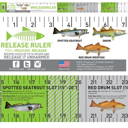 Reel Fish Decals - 3