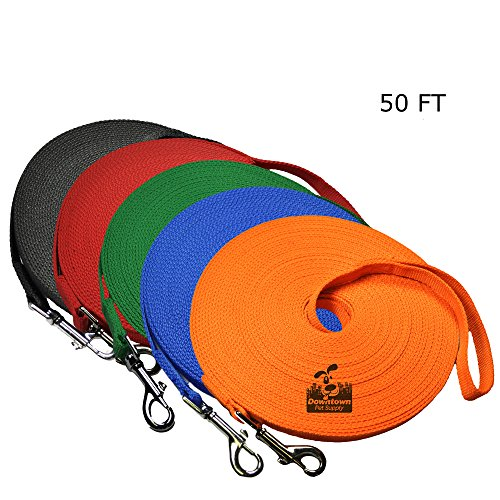 Long Dog Puppy Obedience Recall Training Agility Lead, Leash - ORANGE, 50' Foot - by, Downtown Pet ()
