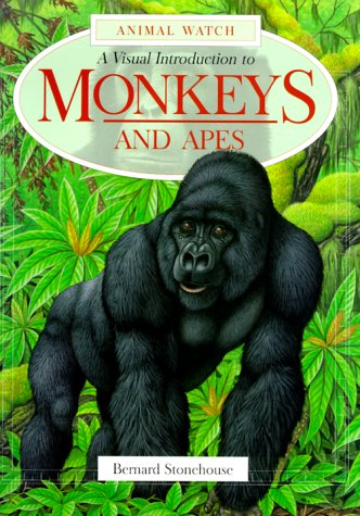 Download A Visual Introduction to Monkeys and Apes (Animal Watch Series) pdf