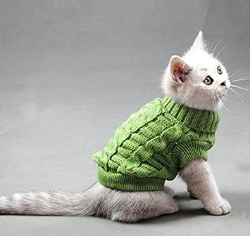 pull col roulé pour chat